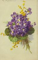 Illustrateur Illustratrice KLEIN CPA  écrite  Non Datée Fleurs Violettes Et Mimosa - Klein, Catharina