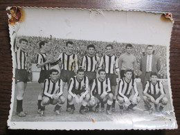 Football Club Partizan Belgrade Serbia - Sports