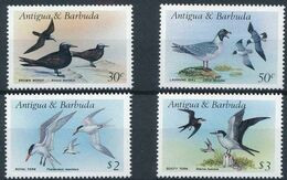 Antigua And Barbuda, 1987, 4 Stamps Birds  20 Euro - Möwen