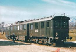 Chemin De Fer Suisse Nyon-Crassier-Divonne, Train En Gare De Borex Arnex (185) CM 10x15 - Stations With Trains