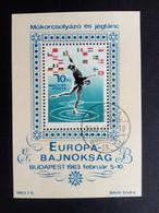 UNGARN BLOCK 37 A GESTEMPELT EISKUNSTLAUF EM BUDAPEST 1963 - Blocks & Kleinbögen