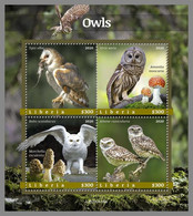 LIBERIA 2020 MNH Owls Eulen Hiboux M/S - OFFICIAL ISSUE - DHQ2102 - Owls
