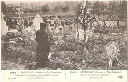 Dépt 51 - ESTERNAY - Le Cimetière - Une Fosse Commune De Soldats Morts Pour La France - (Héliotypie E. Le Deley - ELD) - Esternay