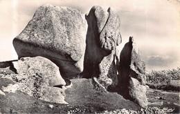 BRIGNOGAN - L élephant  ( Cim N° 19) - Brignogan-Plage