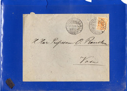 ##(DAN2101-FINLAND 1894 -20 Pen  On Cover From Uleaborg-Oulu - Unclassified
