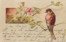 Oiseaux : Illustrateur : à Identifier : Oiseau Perché Sur Une Branche  : édit. K. F. Paris N° 418 : Précurseur - Birds