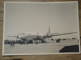 Grande Photo Sur La Piste De BLIDA En Algérie : Armagnac, Dassault Junker ................PHI-63 - Aviación