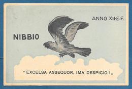 REGIA ACCADEMIA AERONAUTICA CORSO NIBBIO VG. 1934 ANNO XII E.F. N°A975 - Zonder Classificatie