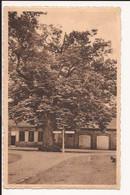 Zoersel  : De Lindeboom 1948 + 2 Strafport Zegels - Zoersel