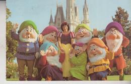 WALT DISNEY COMPANY Snow White And The Seven Dwarfs - Schneewittchen Und Die Sieben  VG - Otros