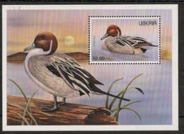 Liberia - 1996 - Bloc Feuillet BF N°Yv. 148 - Faune / Oiseaux - Neuf Luxe ** / MNH / Postfrisch - Non Classificati