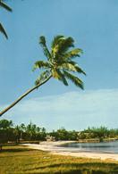 MAURICE.....plage - Mauritius