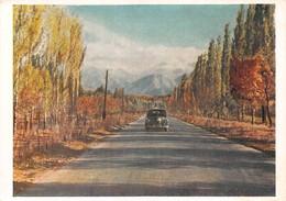 KAZAKH - ALMA-ATA - LENIN PROSPECT ~ AN OLD LARGE POSTCARD  #28920 - Kazakhstan