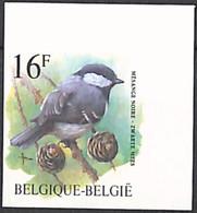 [853192]TB//ND/Imperf-c:50e-Belgique 1999 - N° 2804, ND/Imperf, Mésange Noire, Buzin, Oiseaux, Animaux - Nuevos