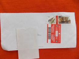 """Omslag België  Melding """" Ontvangt De Briefwisseling Niet Meer Op Het Aangeduide Adres"""" ( Stempel Gent ) - Lettres & Documents"""