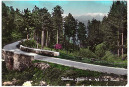 196... BORBONA  (RIETI)  LA PINETA - Rieti