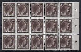 Luxembourg - Luxemburg - Timbres 1927  Charlotte   -  Bloc 15x25C.  Officiel  MNH** - Blokken & Velletjes