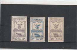 Francobolli - Erinnofilia - Militari - Pro - Patria - - Vignetten (Erinnophilie)