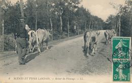 40 - SCENES Et TYPES LANDAIS - Retour Du Pâturage - Ohne Zuordnung