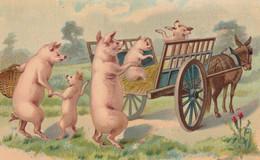 CPA Glacée Cochon Humanisé Position Humaine Porc Pig Pigglet Départ Pour Le Marché Ane Charrette Illustrateur  (2 Scans) - Schweine