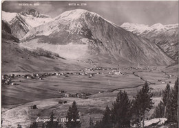 LIVIGNO - ALTA VALTELLINA - PANORAMA - VIAGGIATA 1952 - Altre Città