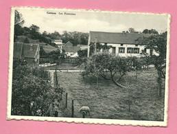 C.P. Casteau  = Les  Fontaines - Soignies
