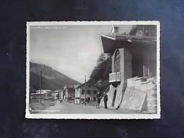 TRENTINO ALTO ADIGE -BOLZANO -BRENNERO -F.G.  LOTTO N°746 - Bolzano (Bozen)