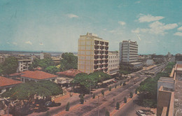 Mozambique, Cores De Moçambique, Lourenço Marques (pk76435) - Mozambique