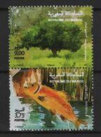 Maroc - Morocco (2020) - Set -  /  Environement - Fauna - Fishes - Trees - Fox - Birds - River - Umweltschutz Und Klima