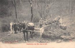 Exploitation Des Bois Dans Le Jura Bûcherons éd Borel Pontarlier - Altri Comuni
