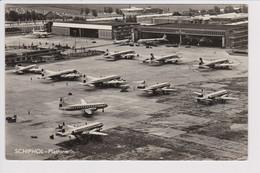 Vintage Rppc KLM K.L.M Royal Dutch Airlines Douglas & Constellation Fleet @ Schiphol Amsterdam Airport - 1919-1938: Between Wars