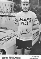 CARTE CYCLISME WALTER PLANCKAERT TEAM MAES - PILS 1975 ( DECOUPE, FORMAT 10 X 15 ) - Radsport