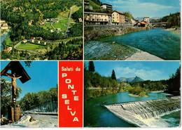 SALUTI DA PONTE SELVA (BG) - Bergamo
