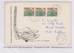 TAAF - Iles Australes -kerguelen - 9-12-59 -  Enveloppe Illustrée Chou - P11x3 - Lettres & Documents