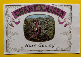 17995 - Chantecaille Rosé De Gamay - Andere