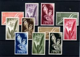 Ifni Nº 103/13. Año 1954 - Ifni