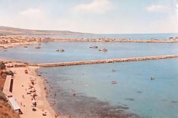 Cartolina - Vibo Valentia Marina - Il Porto - 1957 - Vibo Valentia