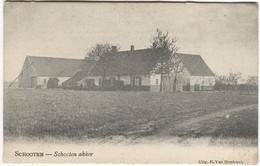 SCHOOTEN Akker  Uitg. P. V An Hoydonck C. 1905 - Schoten