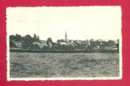 C.P. Champlon  = Panorama - Tenneville