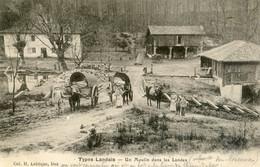 40 - Type Landais - Un Moulin Dans Les Landes Vers Morcenx - Sonstige Gemeinden