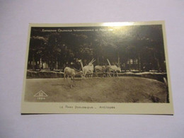 CP Paris - Exposition Coloniale 1931 - Le Parc Zoologique - Antilopes - Exposiciones