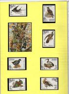 """Madagascar 1991 - Série Complète Et Bloc """"Oiseaux Divers""""  Oblitérée - Used - Andere"""