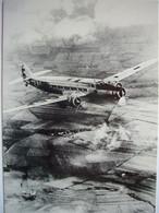 Avion / Airplane / AIR FRANCE / Dewoitine 338 - 1946-....: Modern Tijdperk