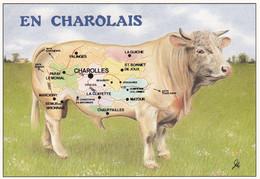 BONNE ROUTE EN  CHAROLAIS  ,COULEUR,A VOIR !!!! REF 69277 - Zonder Classificatie
