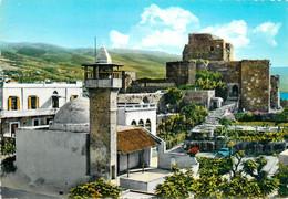 CPSM Liban-Lebanon-Byblos-La Citadelle Et La Mosquée    L221 - Líbano