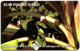 BAHAMAS : BAH05A $5  THE BAHAMA PARROT (gold Nr) USED - Bahamas