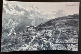 Mürren Obersteinberg/ Hütte Mit Vieh - BE Berne
