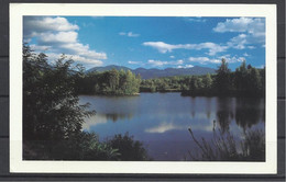 United States, NH, Coffin Pond, White Mountains By Chuck Theodore, Mailed In Manchester NH. 1993. - White Mountains
