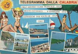 Telegramma  Dalla  Calabria - Otras Ciudades