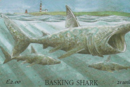 Isle Of Man - Basking Shark - Isla De Man